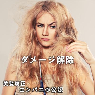 東京美髪研究所承認文京区トリートメント不要美髪矯正